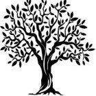 The Olive Tree Logo